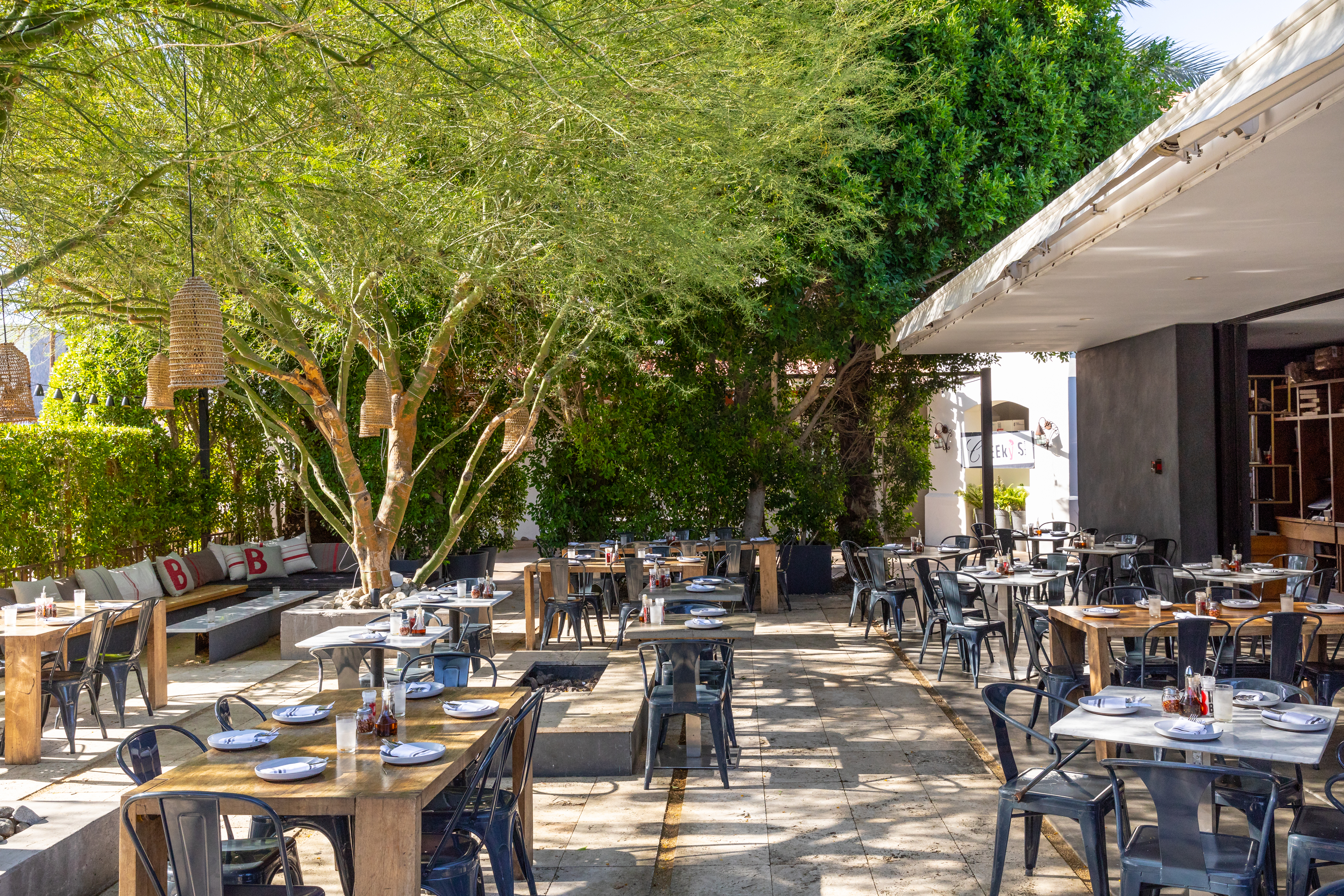 best lounge in palm springs for over 50